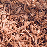 ingredient-sandalwood.jpg