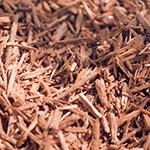 ingredient-sandalwood.jpg